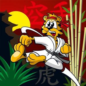 Karate-Tiger 2016