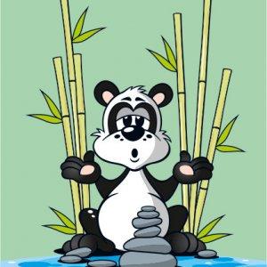 Panda Guru